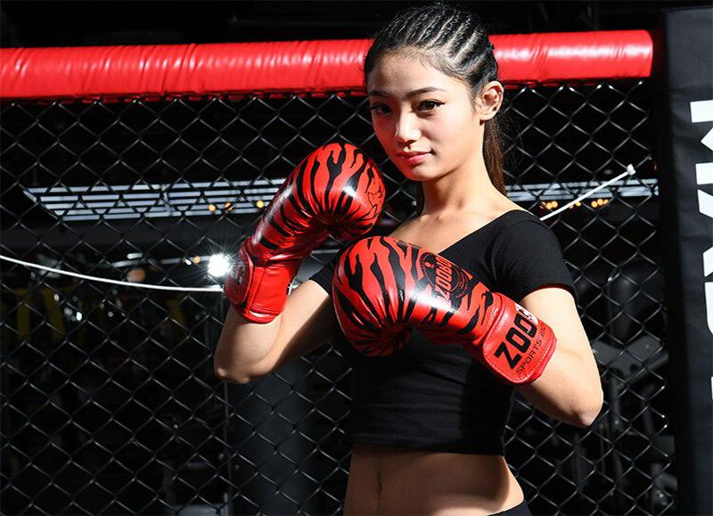 Găng tay Boxing Zooboo Hổ vằn