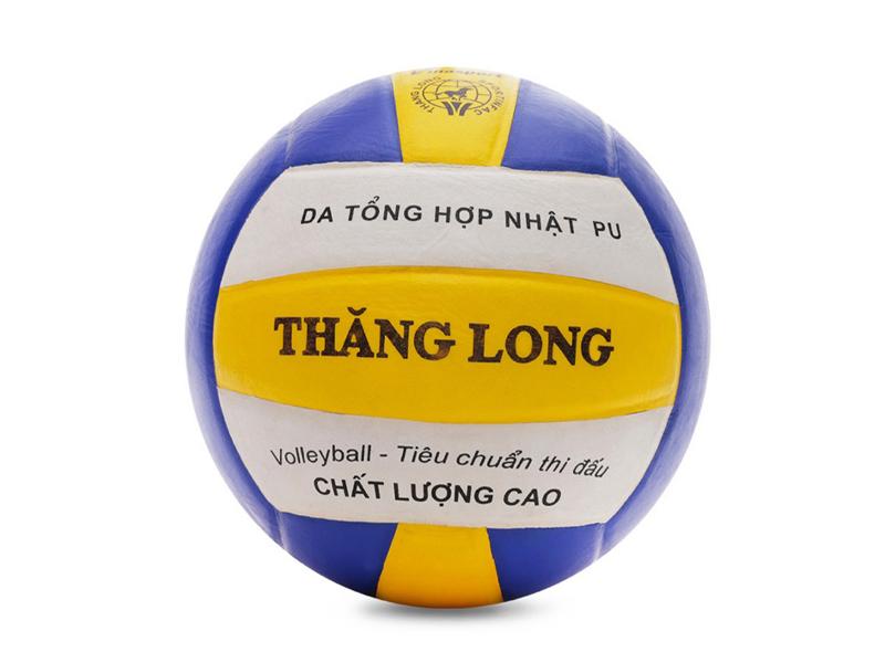 Quả bóng chuyền trong nhà