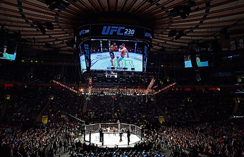 UFC là gì